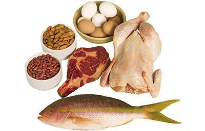 چگونگی هضم و جذب پروتئین ها در بدن