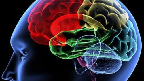 بهبود عملکرد مغز و بیوتین