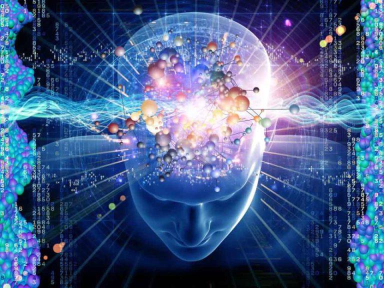 کتون و سلامت مغز