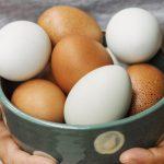آیا مصرف تخم مرغ برای کبد چرب مضر است ؟