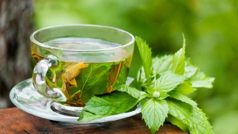 چای سبز و سرطان پروستات