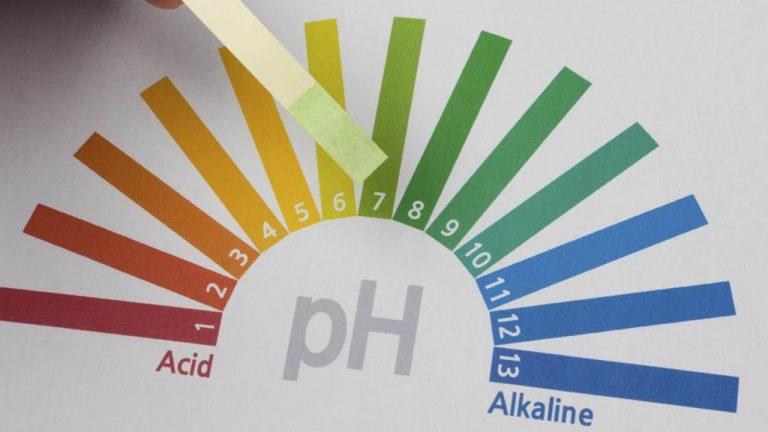 ویتامین C و عدم تعادل اسید در بدن
